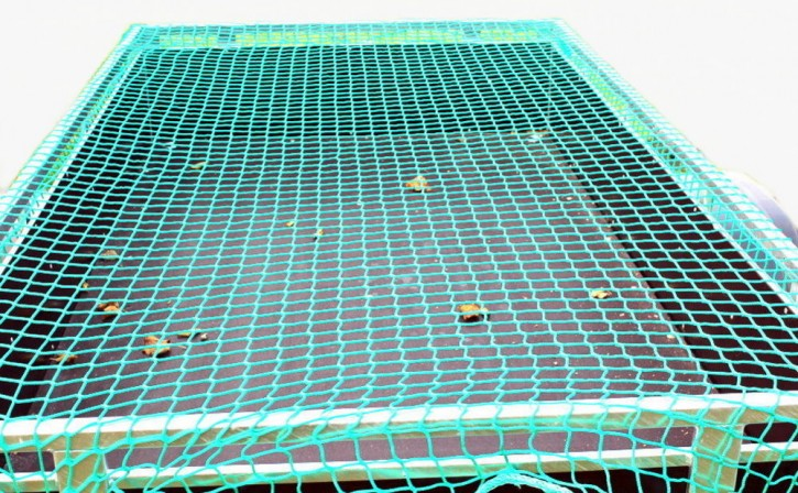 Ladungssicherung-Anhaenger-Netz 2,2 x 1,5 m Transportnetz grün