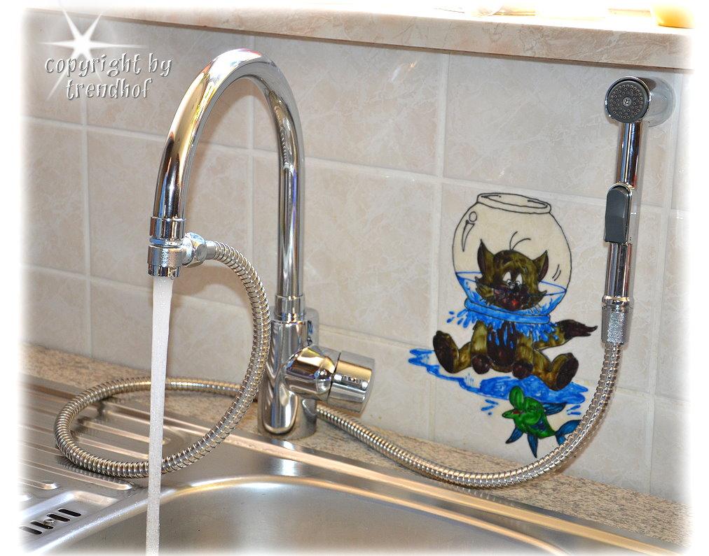 Armaturen küche schlauch  Waschbecken Handbrause